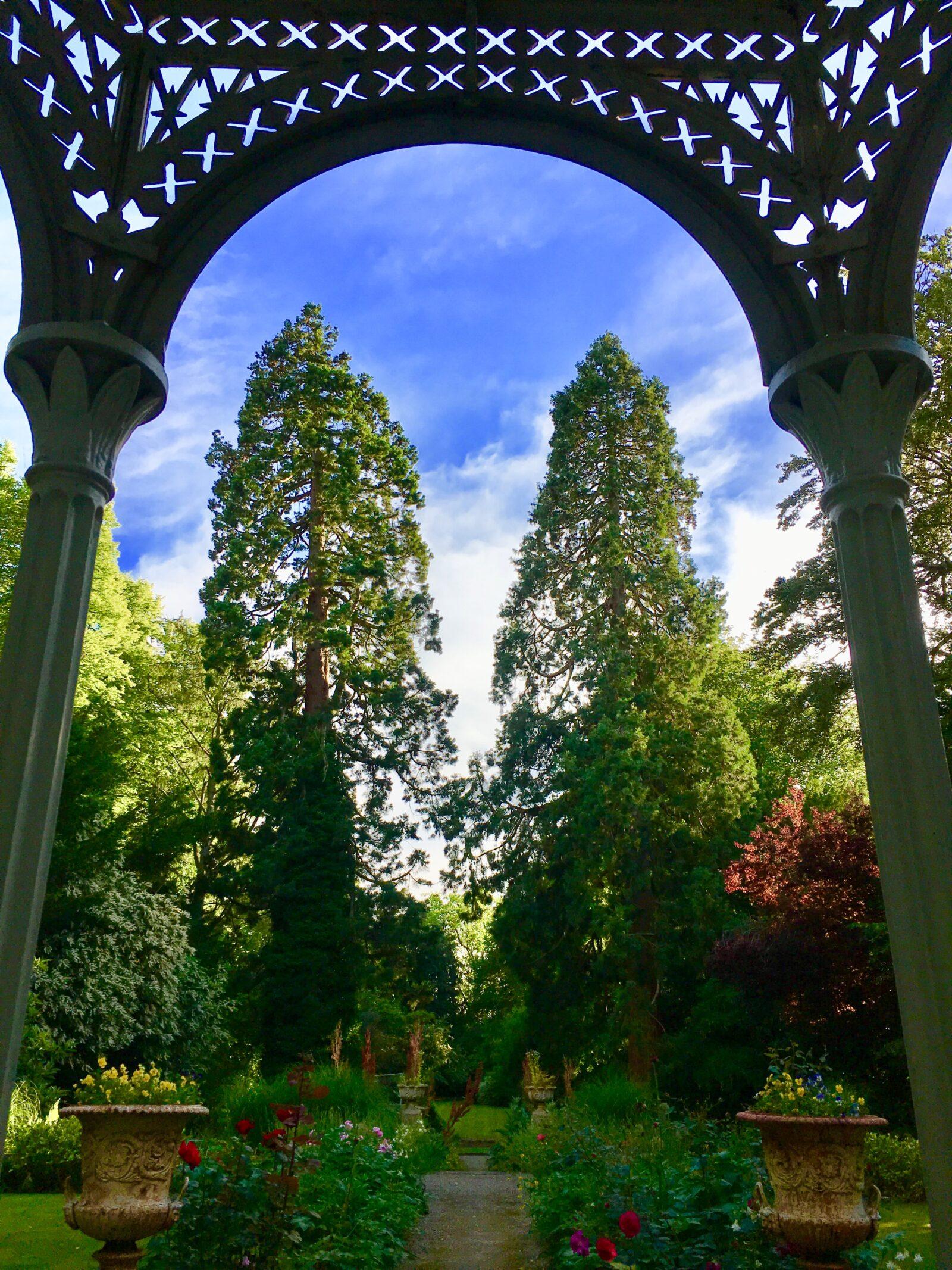 cicero garden